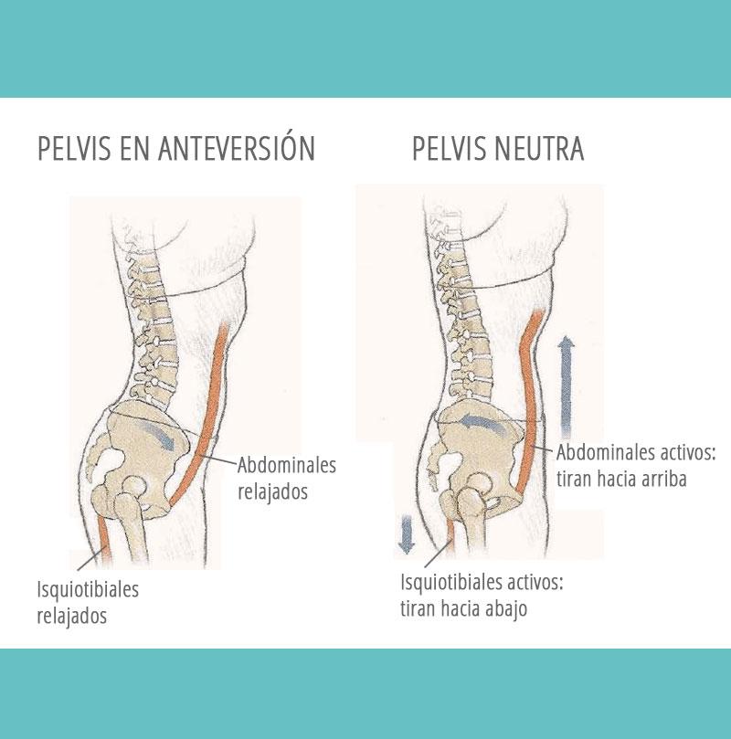 Pilates como tratamiento de la incontinencia urinaria de esfuerzo (I.U.E). Parte III