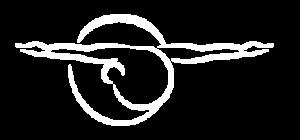 Sane Fisioterapia y movimiento logo fijo retina