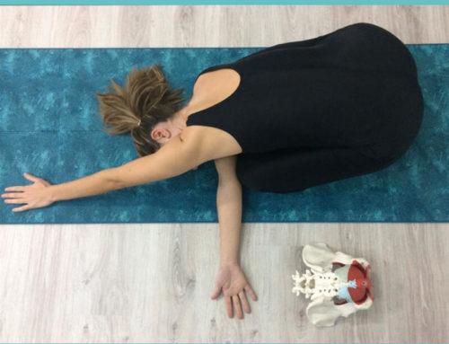 ¿Qué es la utilización corporal?